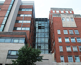 Pinnacle Scaffold Corporation - University of Maryland Medical Center